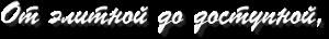 slogan11